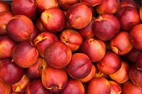Fresh nectarines, close_up