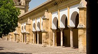 Patio de los Naranjos of Cordoba Cathedral  Old Mosque  Andalusia  Spain