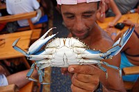 Local fisherman showing a live blue crab, try to encourage to buy a dish made from it on boat with tourists Dalyan river, Turkey