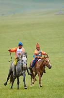 Mongolia, Arkhangai province, horses race for the Naadam festival