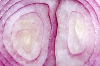 Onion cut vegetable