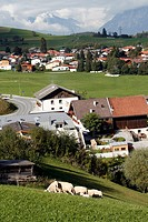 Austria Tirol Tyrol Rinn small town mountain high road pastoral landscape with sheep