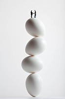 miniature standing on stack of eggs