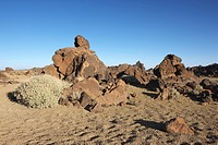 Teide National Park, Tenerife, Spain, Europe