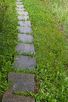 STONE PATH THROUGH LAWN