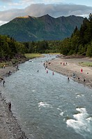 Sport fishermen combat fishing for spawning salmon in Bird Creek along the Turnagain Arm, Southcentral Alaska, Summer