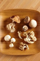 Variety of fresh mushrooms