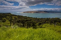 Hokianga Harbour, New Zealand