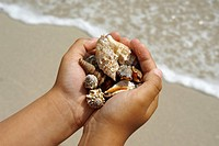 Chield_hands with shells on the sea, Mediterrean Sea, Spain