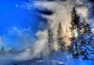 Steam and sun envelope trees during the winter landscape at Yellowstone National Park, Wyoming