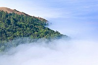 Morning fog obscures the coast of Big Sur California