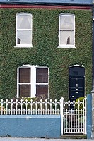 An ivy covered house in Ireland's traditional green, in Limerick, Republic of Ireland