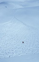Traces in Snow with lonely Skier