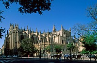 Cathedral of Seville _ Andalusia Spain