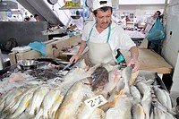 Panama, Panama City, Ancon, Mercado de Mariscos, market, merchant, selling, shopping, retail, fresh fish, seafood, business, stall, local food, Hispan...
