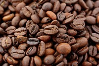 light and dark roasted coffee beans