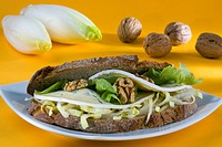 Sandwich with endives, wallnuts, lettuce and Bresse bleu cheese
