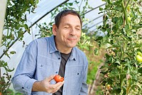 Germany, Saxony, Mature man tasting tomato at the farm