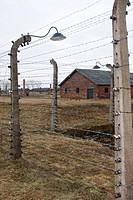 Camp de Birkenau _ Barbelés électrifiés¶