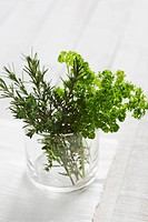 Fresh parsley, rosemary and thyme in a glass