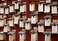 Nesting boxes, Sweden.