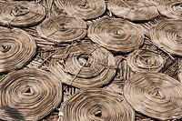 High angle view of dried woven coconut leaves, Kochi, Kerala, India