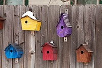 Colorful bird houses displayed on a fence