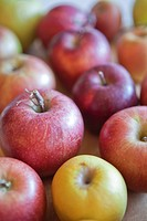 Variety of Apples II