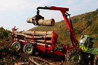Holzarbeiten in schwierigem Gelände