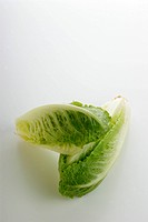 some fresh organic salad on a white background
