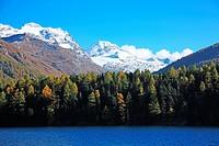 Switzerland, Canton Graubunden, Oberengadin, Silser Lake in autumn