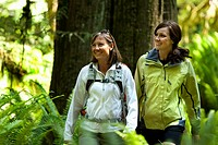 Two hikers walk a trail leading through a forest of green ferns, thick moss and large trees.