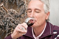 Italy, South Tyrol, Mature man drinking wine