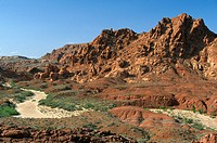 Sandy streambed and rocky mountain in Valley of Fire State Park, Nevada, USA