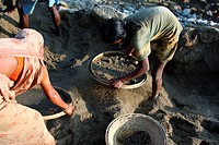 Women sifting sand on the banks of the Mari river in Jaflong, Bangladesh The river coming from the Himalayas of India brings millions of tons of stone...