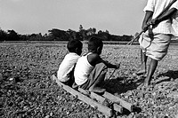Farmer ploughs his paddy land with help of children instead of cattle or tractor due to poverty Banskhali, Chittagong, Bangladesh Junuary 2008