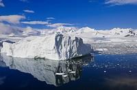 Iceberg Neko Cove Harboor, Antarctica.