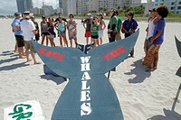 Florida, Miami Beach, Greenpeace, demonstration, protest, Save the Whales, organizer, organizing, sign, group, supporters,