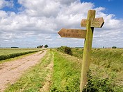 Wooden signpost indicating direction of public footpaths and bridleways Marshlands East Yorkshire England UK
