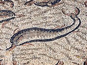 Dolphins, mosaics of the House of Orpheus, Roman City of Volubilis, II bc, archeological site, Morocco