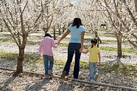 Mother and daughters walking through almond blossoms
