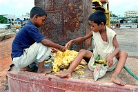 Street children having fruit Usually these kids collect thrown away fruits and other foods from different places especially the rubbish pits, and eat ...