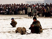 Dog fighting is a popular sport in Afghanistan At this matches dogs fight until the opponent is pinned down or runs out of the ring It continues from ...