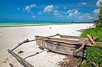 Kiwengwa beach  Zanzibar Island  Tanzania.