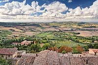 Elevated view of vineyards below Montepulciano