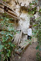 a tourist looks up at hanging coffins on cliffs near the mountain village of sagada, cordillera region, north luzon, philippines