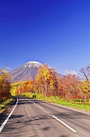 Mount Yotei in Autumn