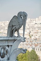a pelican gargoyle overlooking paris, paris, france