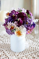 Pansies in a vase