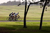 Photograph of bicycle riders in the Yarkon Park _ the green lungs of the city of Tel Aviv
